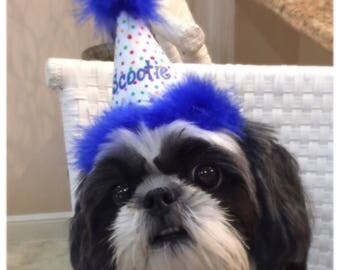 Your Pets Birthday Hat for dog, cat, bird, lizard, ferret