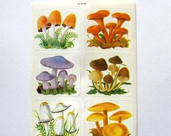 SALE Dennison Mushroom Vintage Sticker Sheet - 80's Fungi Toadstool Fungus Spore Mycophagist Psilocybin Scrapbook Collage