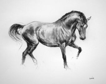 Beautiful Equine horse art horse gift wall art home decor dressage horse print 'Fluidity' from an original charcoal sketch