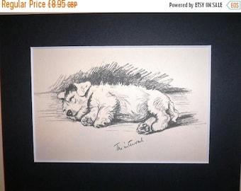 SALE Sealyham terrier Vintage Mounted 1936 'Mac' Lucy Dawson Albert terrier dog plate print Unique birthday anniversary dog lover  gift