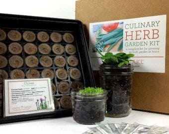 DIY Culinary Herb Garden Kit