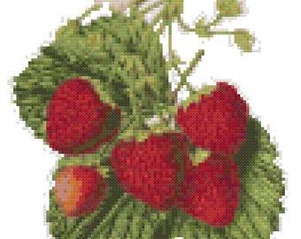 Vintage Strawberries Drawing Cross Stitch Pattern, Digital Download PDF