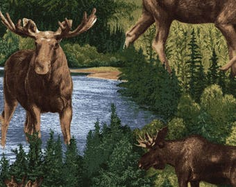 Moose Fabric - Wilderness Material - Timeless Treasures - Cotton Yardage - Quilting, Clothing, Craft - Fat Quarter, Half, or  By the Yard
