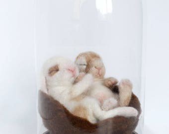 Baby Bunnies, Bunny Sculptures, Needle Felted Bunnies, Glass Dome display, Art