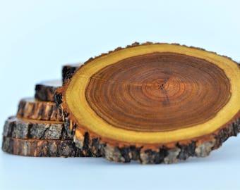 Coasters - Texas Mesquite Wood Coasters -  Set of 6