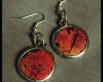 Orange fuchsia earrings black polymer