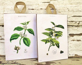 Vintage Botanical COFFEE TEA Wood Sign Natural Book History Page Art Vintage French Farmhouse Decor Set of 2 Fixer Upper Decor