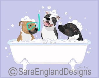 Spa Day - Staffordshire Bull Terrier