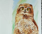 Primo - Great Horned owlet WATERCOLOR greeting card - ORIGINAL - Hand painted - FREE Shipping!