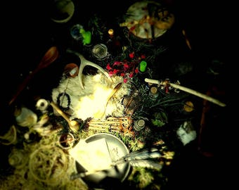 Subscription Box: Roots, Stones, Dirt & Bones Curio Collection