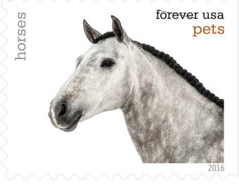 10 Unused Horse Forever Stamps // Horses Postage Stamps For Mailing