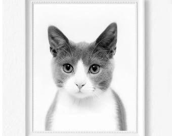 Kitten Print - Cat Print - Printable Wall Art - Black and White Cat Poster - Instant Download Printable Art - Minimalist Scandi Modern Decor