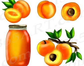 50% OFF Peach clipart, Peach Clip art, Apricot Clipart, Scrapbooking, Invitations, DIY, Embellishments, Orange, Hand Drawn, download, Commer