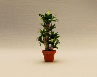 1/2 inch scale minaiture-Yucca Plant