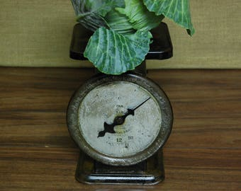 Vintage Pelouze 24 lb. Family Scale, vintage black farmhouse scale, vintage kitchen scale, vintage produce scale, vintage kitchen decor