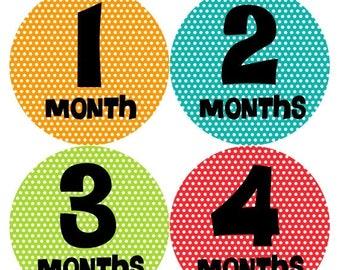 Monthly Baby Milestone Stickers Baby Boy Baby Shower Gift One-Piece Baby Stickers Monthly Baby Stickers Baby Month Sticker 194