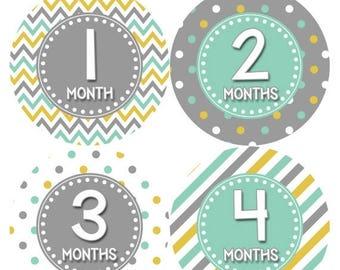 Monthly Baby Milestone Stickers Baby Boy Baby Shower Gift One-Piece Baby Stickers Monthly Baby Stickers Baby Month Sticker 418