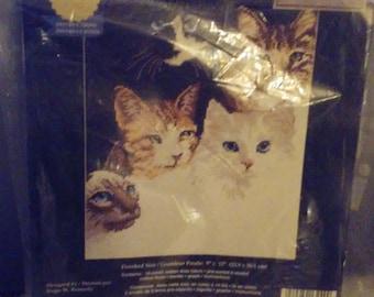 "Vintage Janlynn ""Cats Eyes"" Cross Stitch Kit 1998 Crafts 9"" x 12"" Roger W Reinardy"