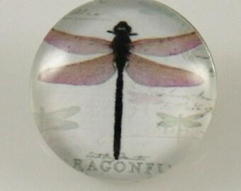 KB2854  Art Glass Print Chunk - Antique Dragonfly