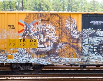 Gorilla Love: Train are, graffiti. Frame not included. Individually photographed and printed by Frank Heflin