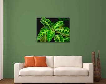 Leaf Photography, Plant Photography, Tropical Photography, Plant Print, Nature Photography, Plant Wall Art, Nature Wall Decor, Botanical Art