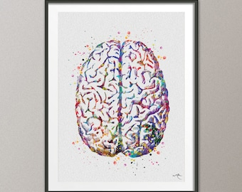Brain Anatomy Watercolor Print Medical Art Science Art Anatomy Art Neurology Human Brain Doctor Gift Nurse Science Poster Psychological -971