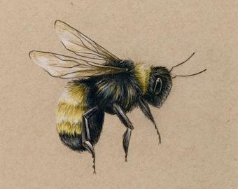 Bee Art PRINT Drawing