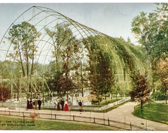 flying cage New York Zoological Park 1906 unused postcard
