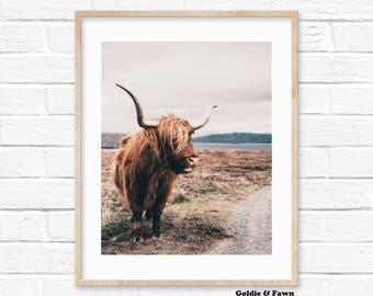 Highland Cow Print, Digital Print Download, Photography Print, Nursery Print, Scandinavian digital print