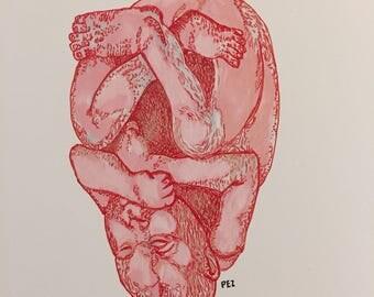 Heart Fetus