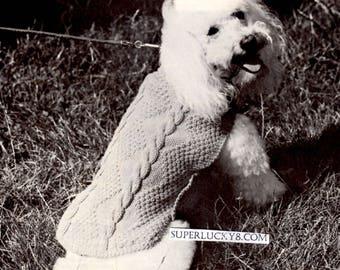 Vintage poodle dog coat knitting pattern in PDF instant download version , PDF downloadable