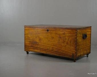 Antique Polished Camphor Wood Trunk