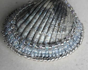 Seashell pendant and beads. Pendant gray. Czech glass seed beads.