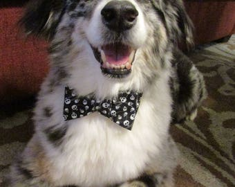 Dog Bow Tie Adjustable Halloween Black with Skulls