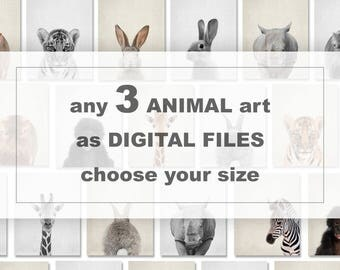 Choose any 3 ANIMAL arts from my shop PinkeeArt and turn into digital files