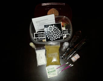 Complete Do-It-Yourself Henna Kit for Intermediate Artists