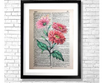 G FOR GERBERA - Red Pink Gerbera Daisy Vintage Antique Botanical Watercolor Ink Illustration Old Book Page Painting Drawing Art Print Poster