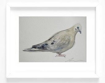 Original 5 x 7 Watercolor Painting - Mourning Dove