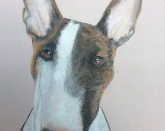 Mini Bull Terrier custom pet portrait