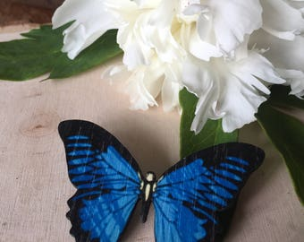beautiful blue butterfly pin, gift for her