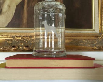 1950's Schnauzer Glass Apothecary Jar for Fancy Bone Storage