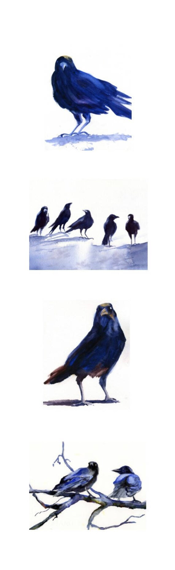 8x26 - 4 matted watercolor crows and ravens