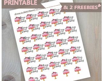 Birthday Countdown Printable Sticker Kit,Birthday printable planner stickers,Cake planner Stickers,Birthday Cake Stickers,Birthday countdown