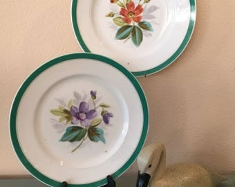 Decorative Floral Vintage Plates / Hand-Painted / Cottage Style / Cottage Decor / Set of Two