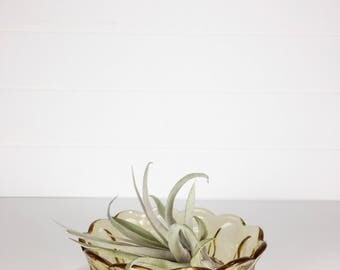 Retro yellow amber glass dish | jewelry dish | trinket dish