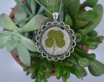 Genuine 5 Leaf Clover Necklace [SP 012] / Stainless Steel / Lucky White Clover Pendant / Triforium Repens Gift / Rare Good Luck Charm