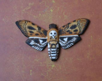"Refrigerator magnet ""Death's - head hawkmoth"". ""Sphinx moth"" fridge magnets"