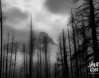 "Through the Mist- 60""x40"" limited edition landscape photography print"