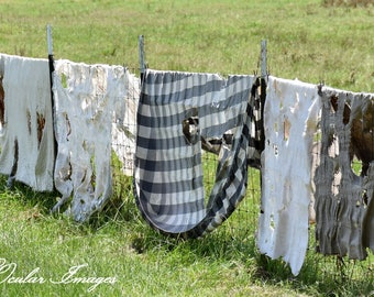 Country Print, Laundry Room Wall Art, Laundry Room Decor, Country Photography, Laundry Photography, Country Greeting/Note Cards, Whimsy