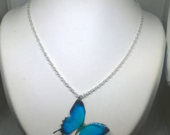 Blue and black Butterfly Necklace